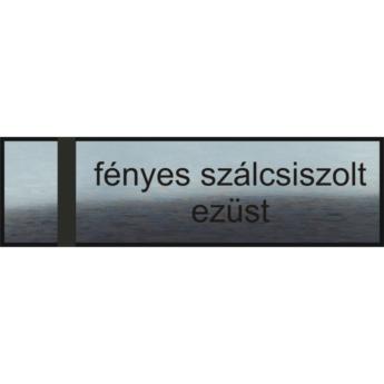 Gravírozott névtábla - fényes szálcsiszolt ezüst
